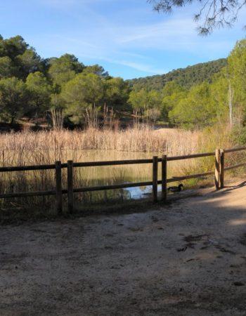 Paraje Natural Les Rodanes