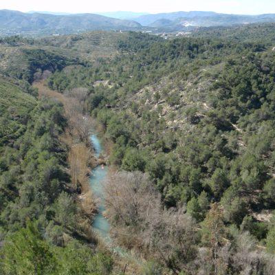 Ruta Azul: El Palmeral
