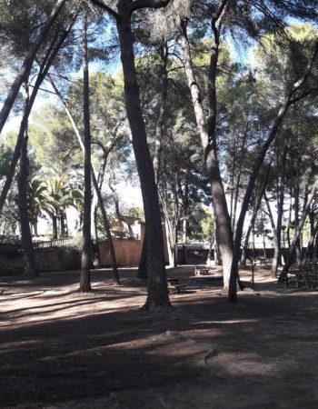 Parque de San Vicente