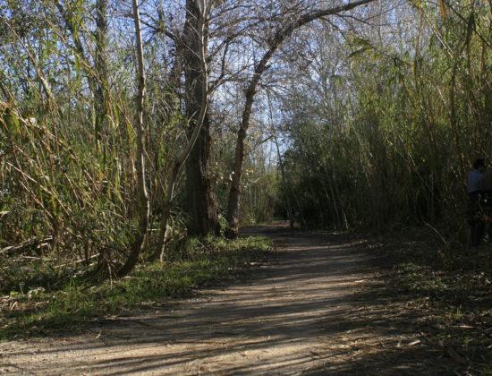 Ruta bicicleta Parque fluvial del Turia