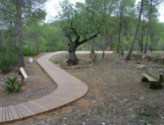 El Arboreto