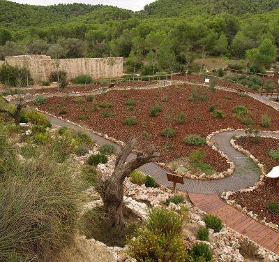 Arboreto Vilamarxnat