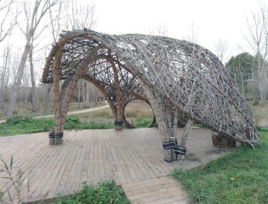 Arquitectura cañas